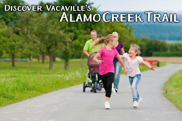 Alamo Creek Trail