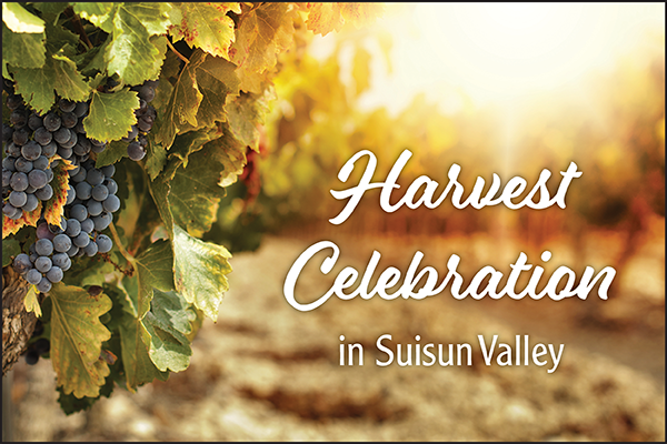 harvest celebration suisun valley 2018