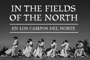 In the Fields of the North