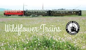 wildflower trains in suisun 2