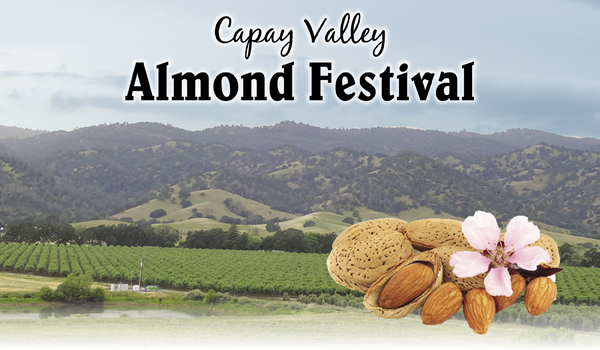 capay valley almond festival