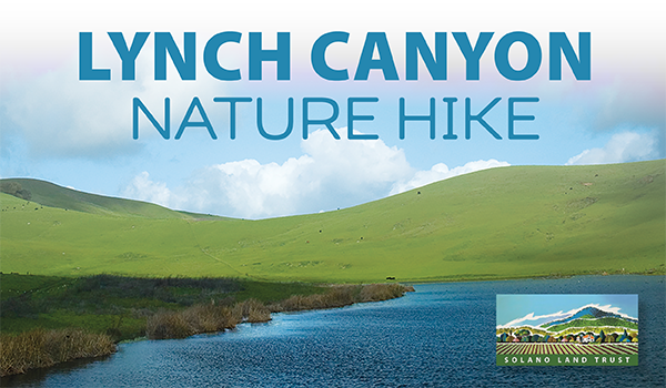 lynch canyon nature hike