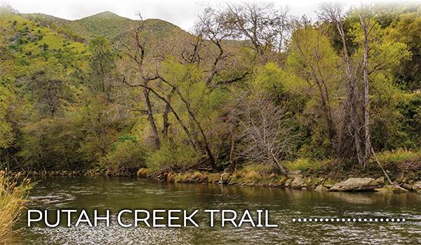 putah creek trail