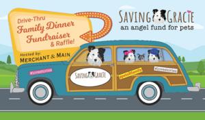 saving gracie fundraiser