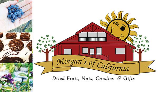 morgans of california winters